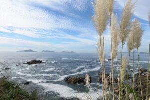 sea-landscape