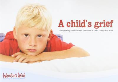 a childs grief