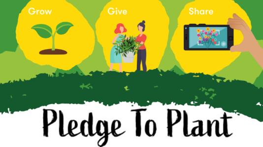 Pledge to Plant Grow Give Share IHF